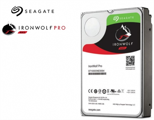 IronWolf Pro 6TB Hard Disk Drive for NAS