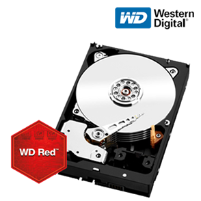 WD WD100EFAX